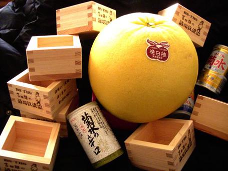 sakao02163.jpg