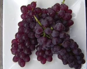 grape 11